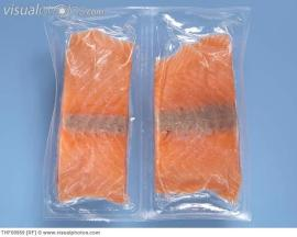 Individually Packed Frozen Salmon Fillets